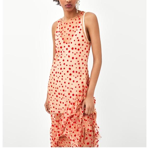 a8d35d83 Zara Dresses   Gorgeous Nwt Semi Sheer Polka Dot Dress   Poshmark